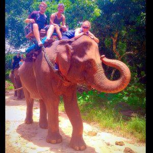 alex thailand